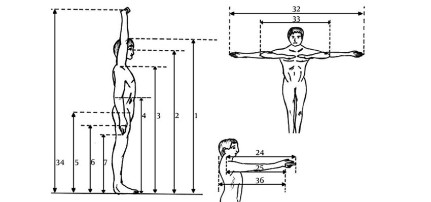El inter s por las dimensiones del cuerpo humano for Medidas ergonomicas del cuerpo humano